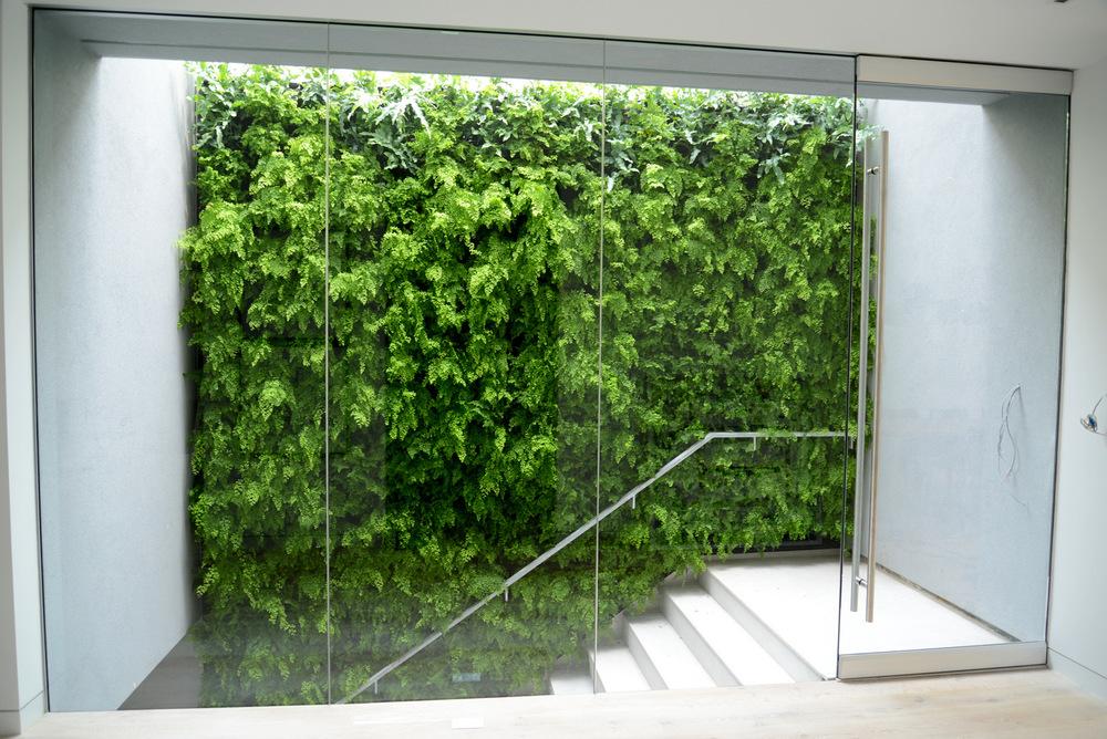 jardin interior diseño interiorismo