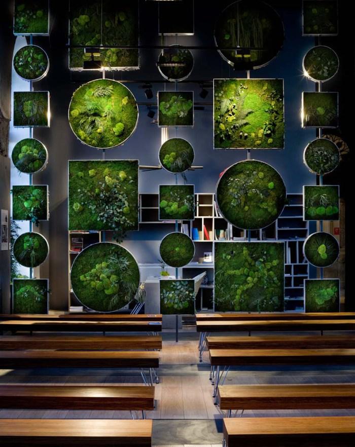 jardines decorativos diseño interiores
